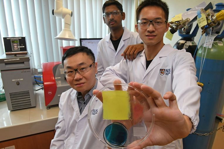 NUS researchers invent 'humidity digester' to keep rooms feeling cool at zero energy cost