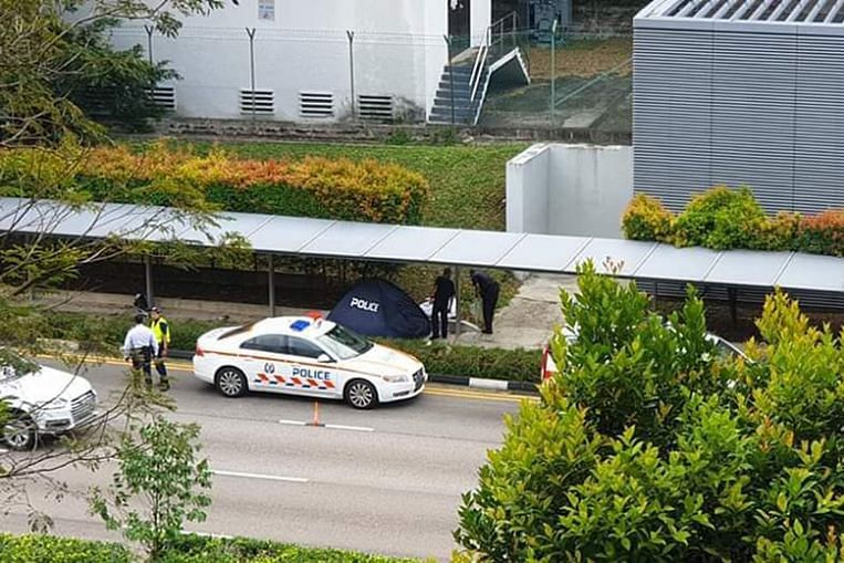 Maid dies in hit-and-run accident at Farrer Road