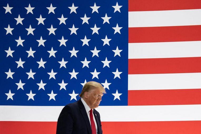 Not Trump-hant - cover