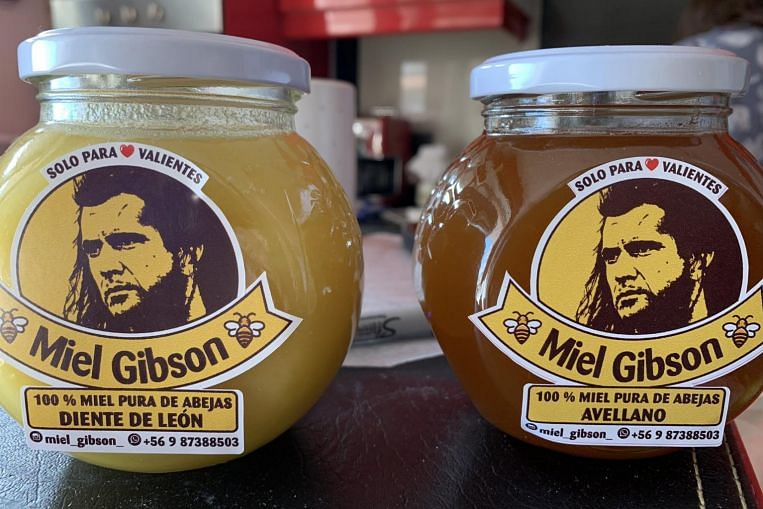 Miel Gibson: Chilean honey vendor in sticky situation with Braveheart star