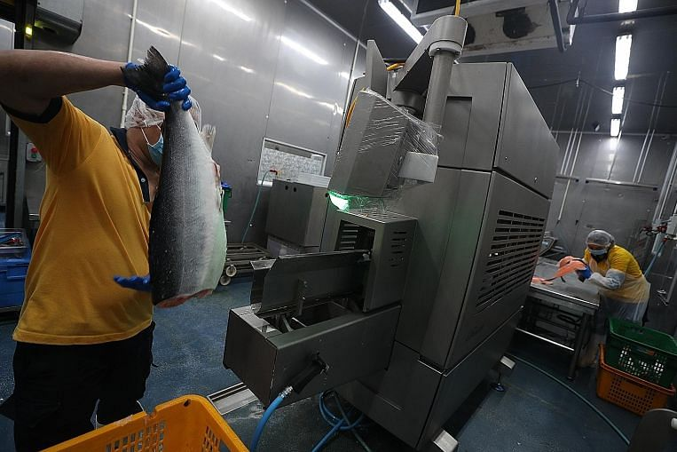 Seafood supplier reels in benefits from machines