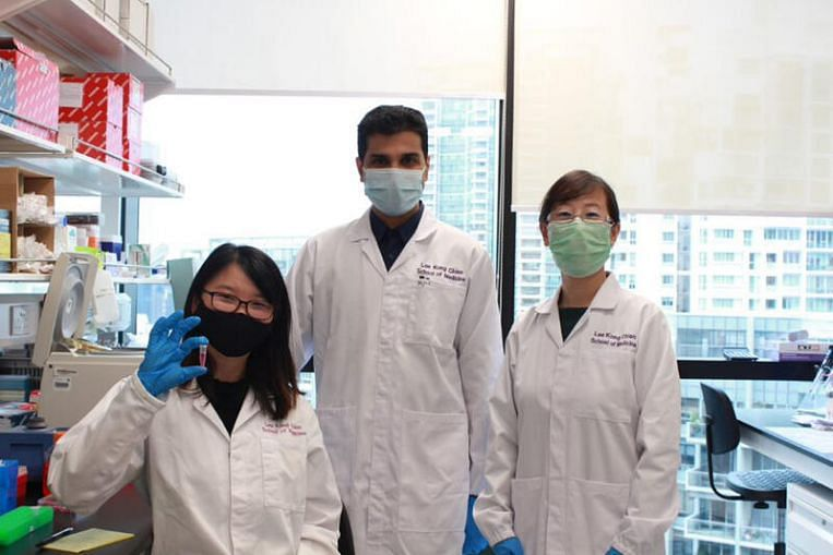 NTU scientists develop oral insulin nanoparticles which may be alternative to injections thumbnail