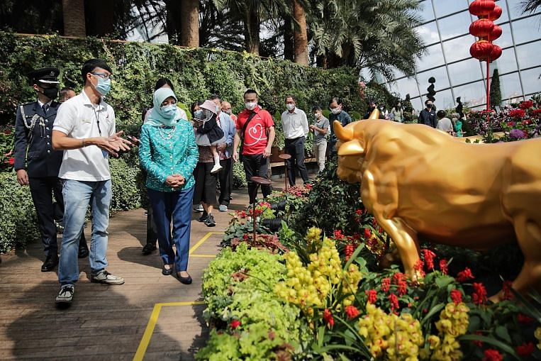 Record $250k gift to help less fortunate visit Gardens by the Bay thumbnail