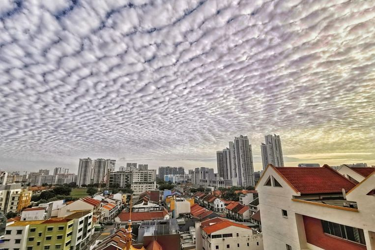 Singapore wakes up to blanket of altocumulus clouds on Sunday morning thumbnail