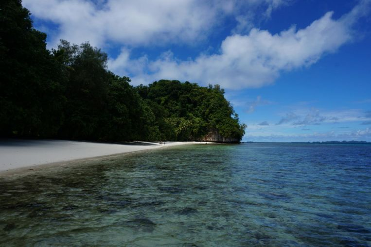Palau mendatangkan pelalian 100% Covid-19, Berita Dunia & Berita Teratas