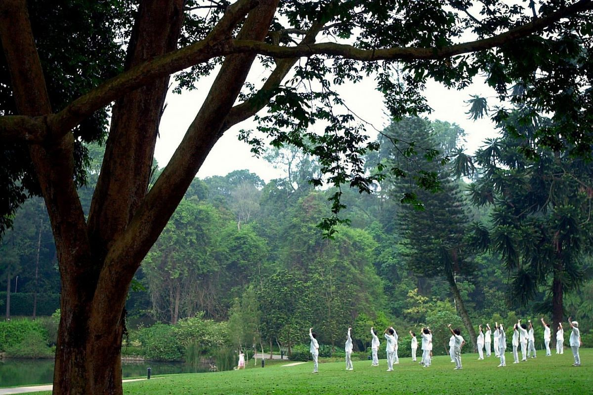 A group of people moving in a mix of dance and qigong movements known as yuan ji wu at the Botanic Gardens.