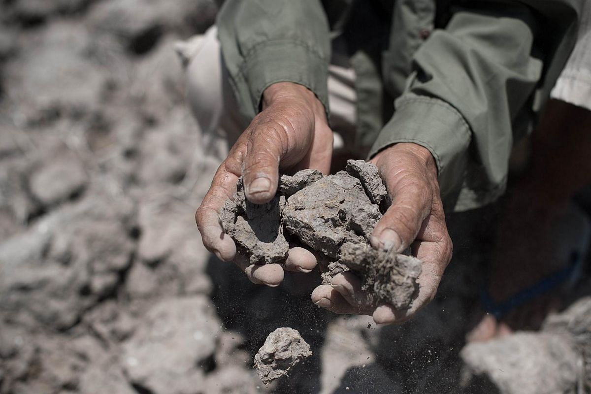 A Thai farmer showing the dried soil from his field which usually yields a crop, in Bang Pla Ma district, Suphanburi province.