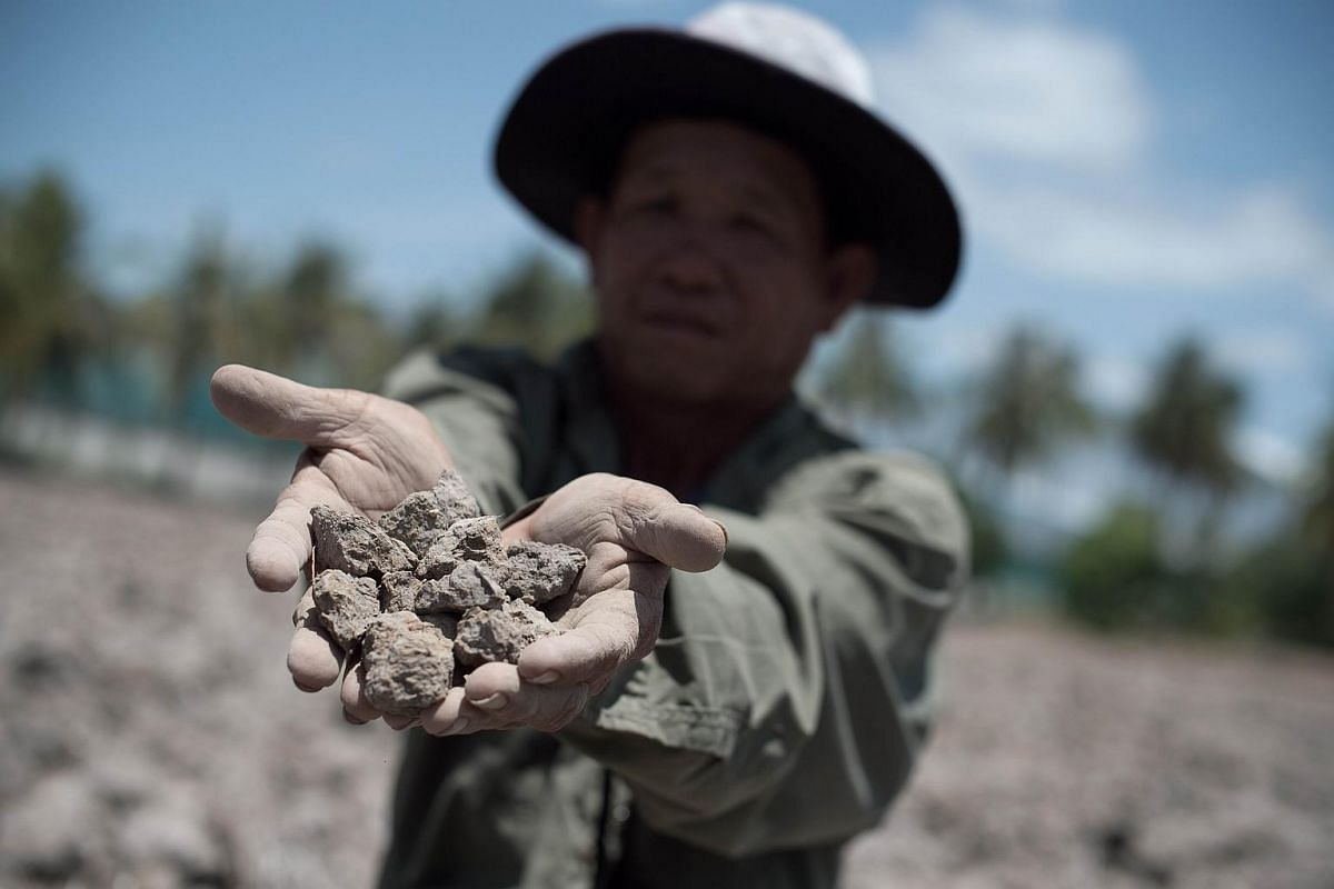 A Thai farmer showing the dried soil from his field which usually yields a crop, in Bang Pla Ma district.
