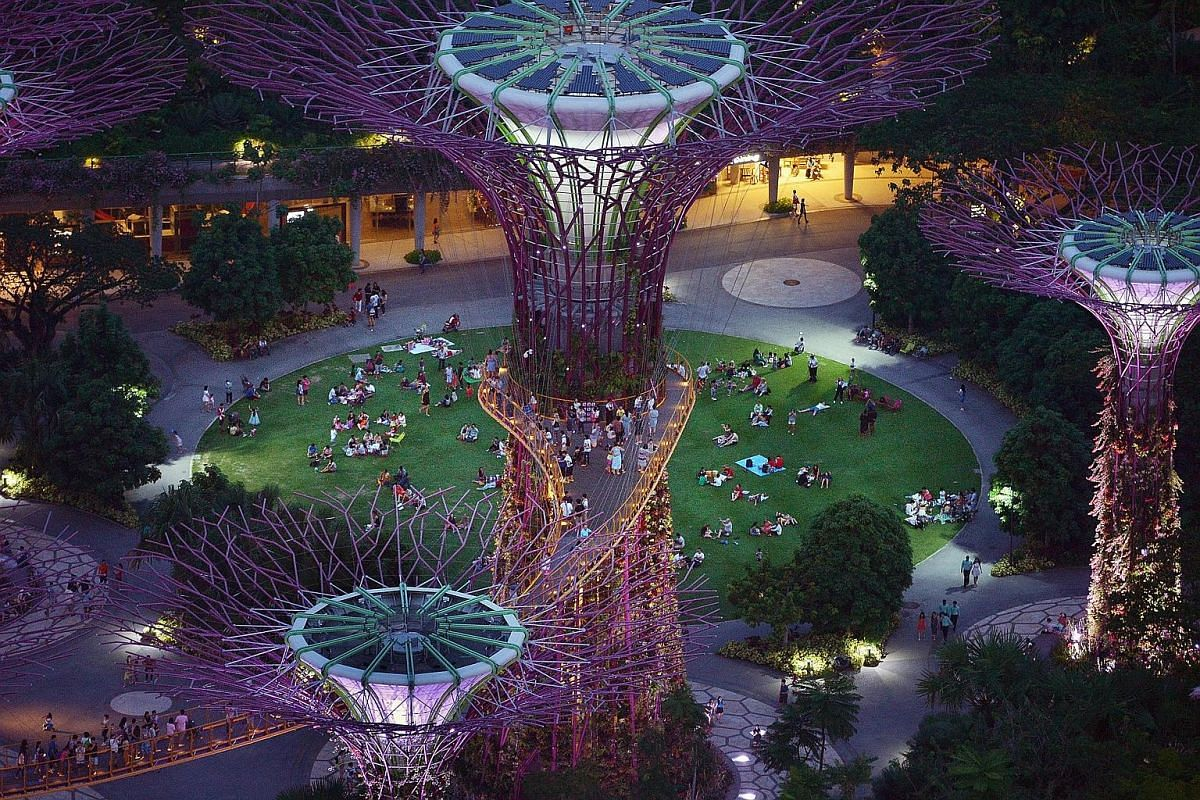 Gardens by the Bay, with its towering vertical gardens – better known as the Supertrees – lit up, is a popular destination for an evening stroll.