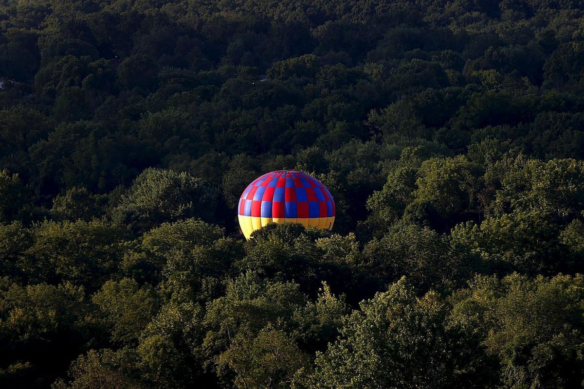 A hot air balloon coming to rest amid trees, as seen from a flying balloon just after sunrise on Day 1 of the 2015 New Jersey Festival of Ballooning in Readington, New Jersey, on July 24, 2015.