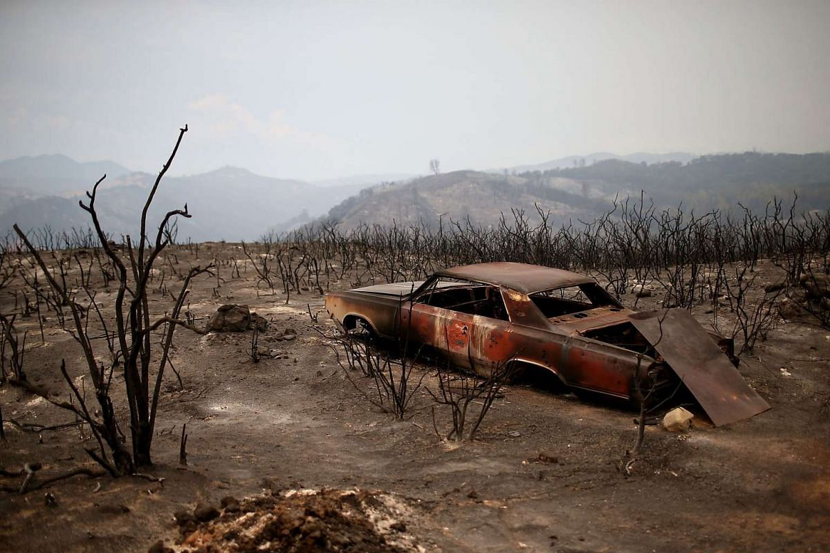 The shell of a car sits in an area charred by the Rocky Fire on July 30, 2015 in Lower Lake, California.