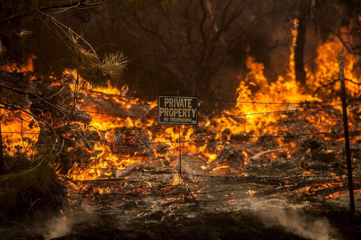 The Rocky Fire burns through a fence line in Lake County, California July 30, 2015.