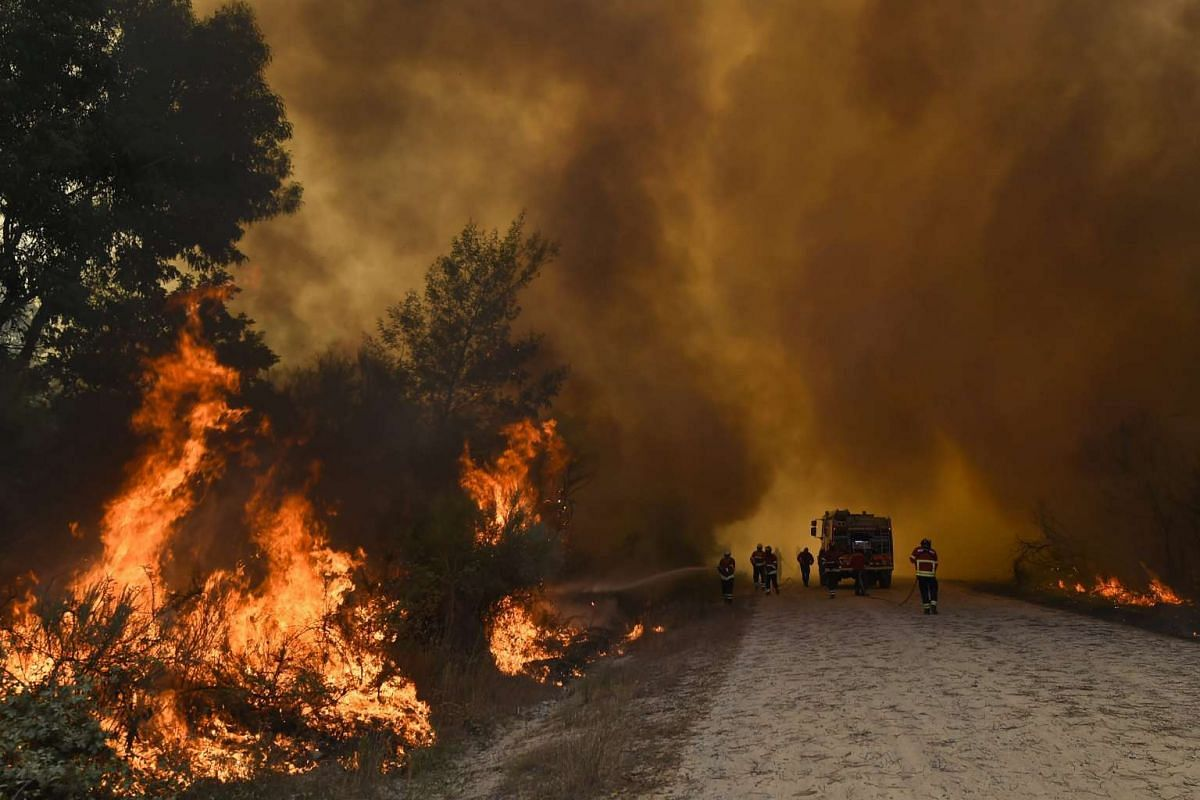 Firefighters fight the flames during a forest fire at Mangualde, Portugal, 10 August 2015. About 200 firefighters, 58 land vehicles, two helicopters and one plane are working to fight the fire.