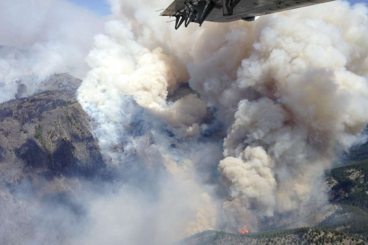 Smoke rising from the TePee Springs fire in the Payette National Forest is seen in an aerial picture taken by the McCall Smokejumpers near Riggins, Idaho on Aug 17, 2015. The fire has burned 124,889 acres as of Aug 17, according the the US Forest Ser