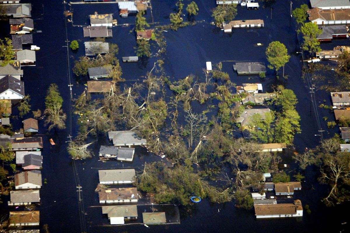 A file photo taken on Aug 31, 2005, showing fallen trees outside New Orleans, Louisiana, where houses were submerged to the roof by floodwaters.
