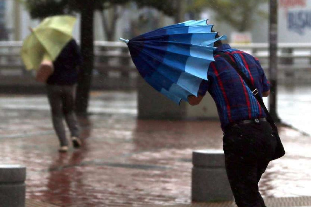 People battle with the strong wind and rain caused by Typhoon Goni in the southeastern coastal city of Busan, South Korea, Aug 25, 2015. The typhoon is expected to reach the sea 160 kilometers off the city's eastern coast later today.