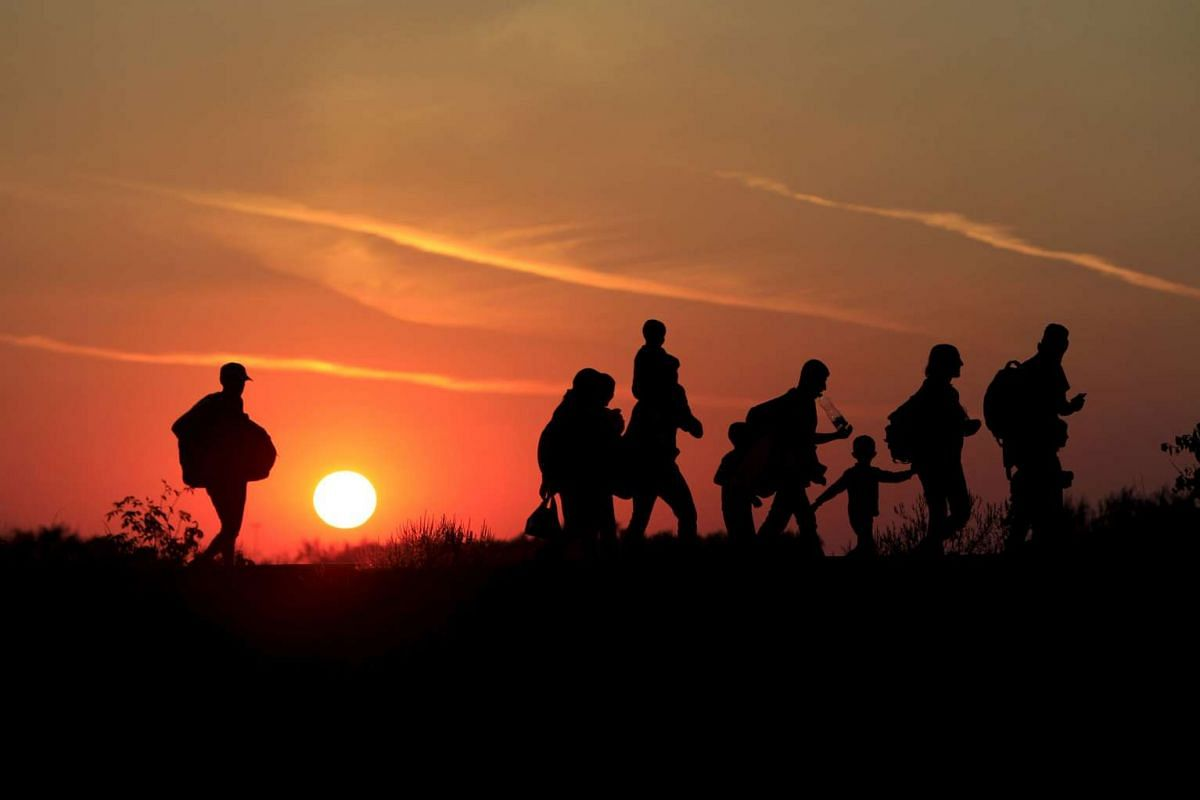 Migrants walking along in the sunset after crossing into Hungary from the border with Serbia near Roszke, Hungary, on Aug 30, 2015. About 100,000 migrants, many from Syria and other conflict zones in the Middle East, have taken the Balkan route into