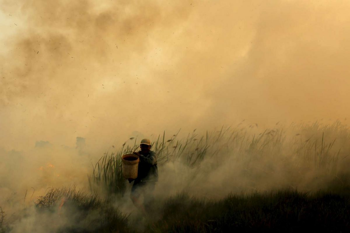 A resident carries a bucket of water as he tries to extinguish fires near his home, at Pal 7 village in Ogan Ilir district, Indonesia's South Sumatra province, September 3, 2015, in this photo taken by Antara Foto. PHOTO: REUTERS / ANTARA FOTO/ NOVA