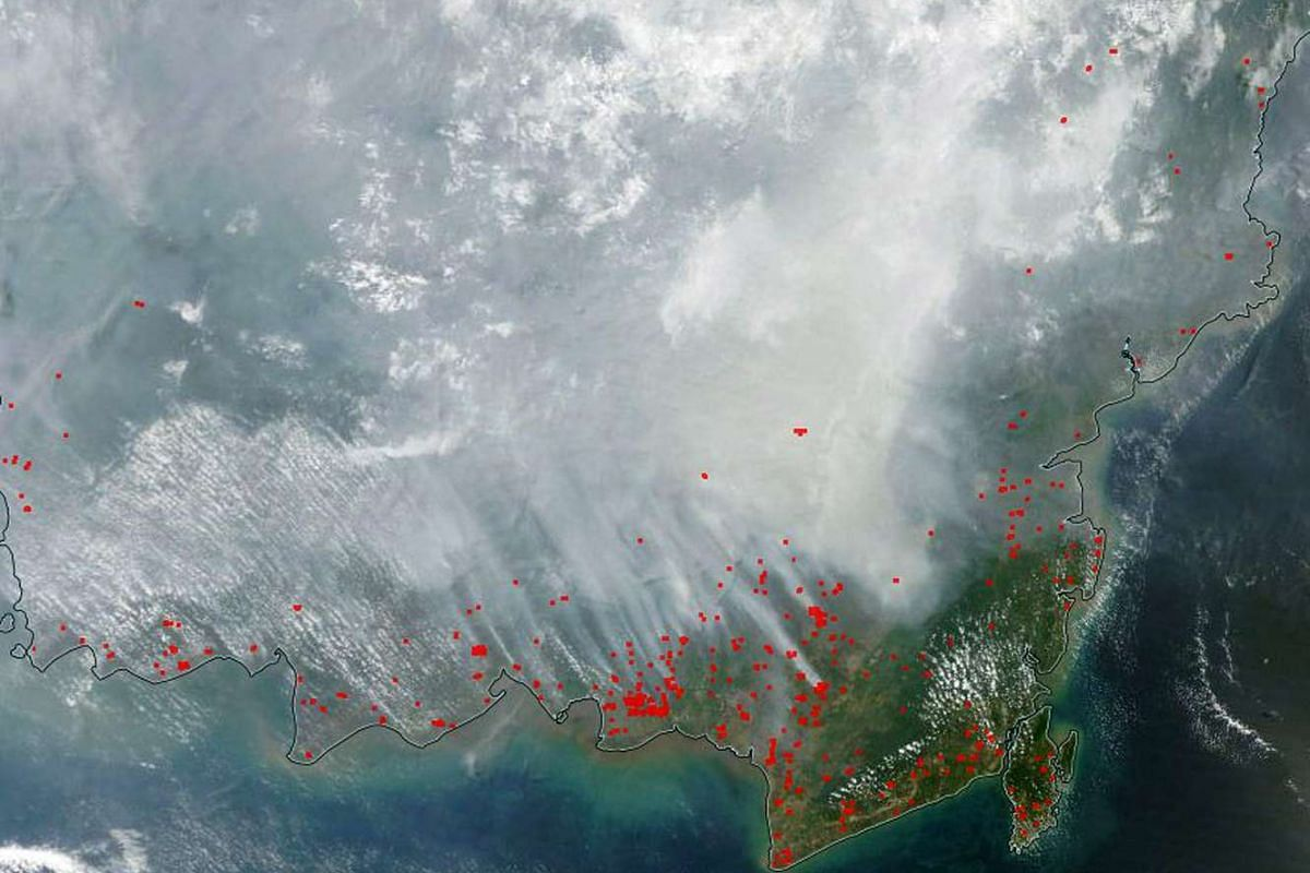 Nasa Modis satellite images over Kalimantan from Nasa's Global Imagery Browse Services (GIBS).