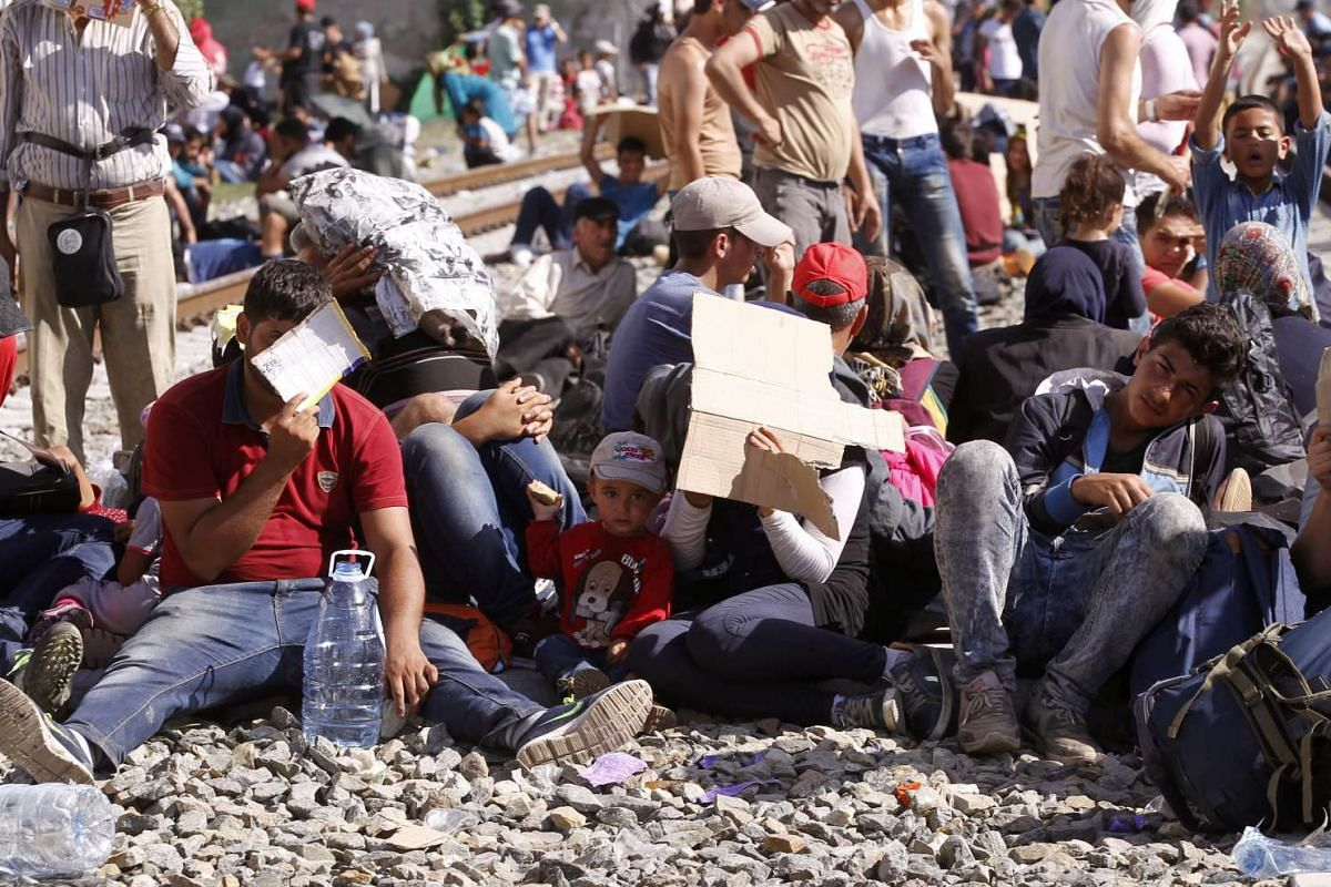 Migrants endure a wait to enter a registration camp after crossing the Serbia-Croatia border near the Croatian town of Tovarnik on Sept 17, 2015.