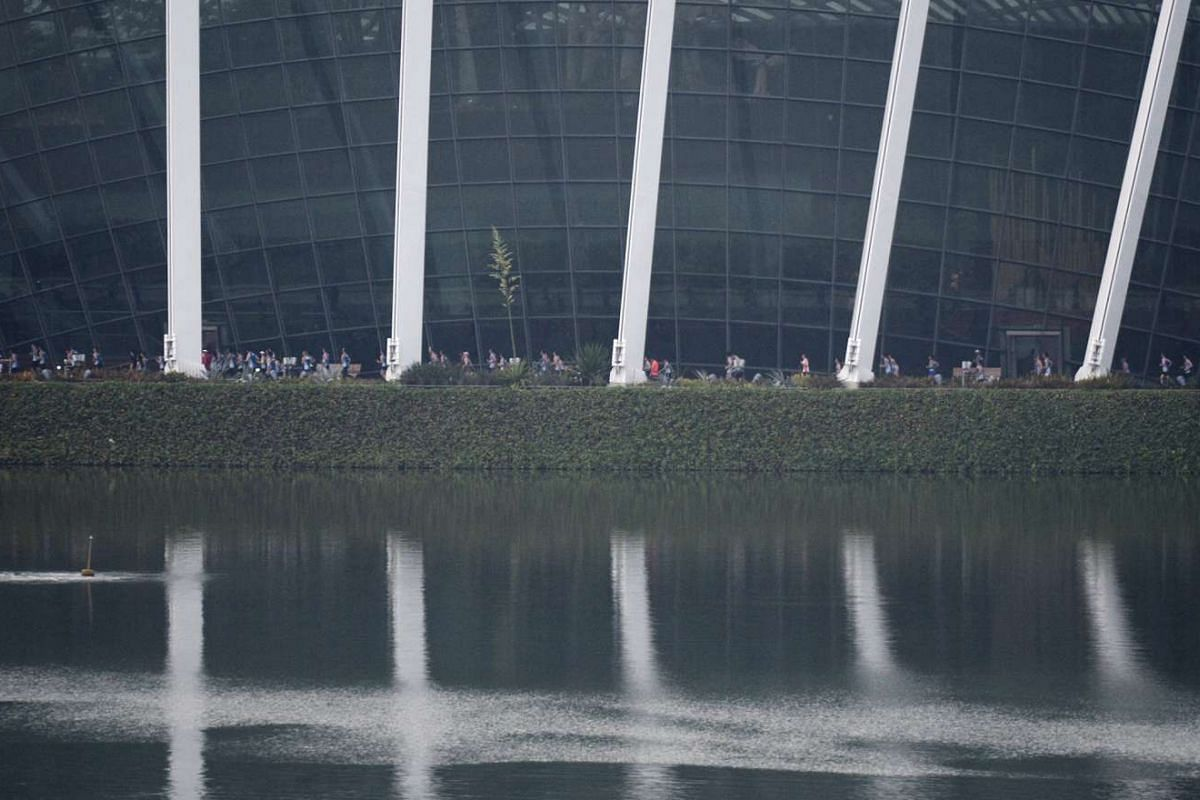 Participants of the 10km race running past the domes at Gardens by the Bay.