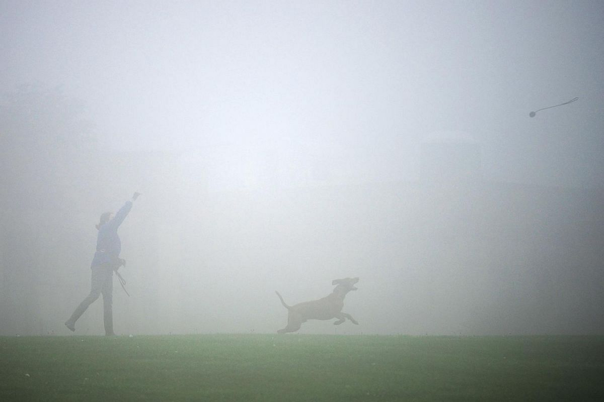 A woman playing with her dog in London in fog-shrouded Crystal Palace.