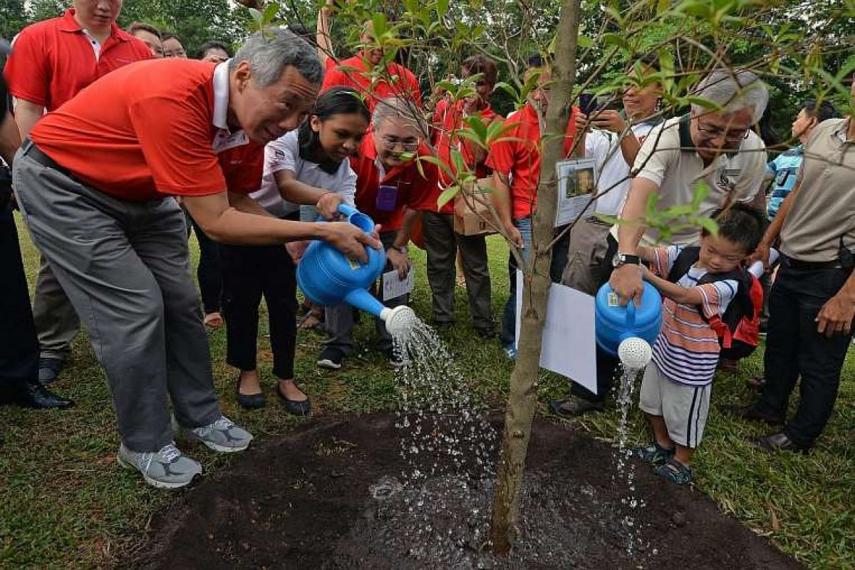 Prime Minister Lee Hsien Loong planted a tree on Sunday (Nov 8) in Ang Mo Kio Garden East to commemorate the annual Tree Planting Day, which promotes keeping the environment clean and green. Also present were other MPs of Ang Mo Kio GRC and Sengkang