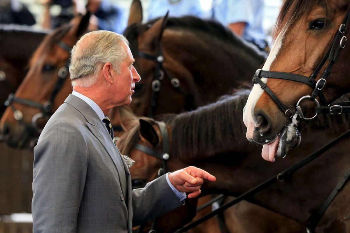 Britain's Prince Charles speaks to a policeman (not pictured) as he visits the New South Wales Mounted Police Unit in Sydney, Australia, on Nov 12, 2015.