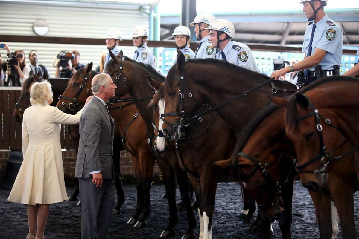 Britain's Prince Charles and Camilla, Duchess of Cornwall, inspect horses and their riders as they tour the New South Wales state police headquarters in Sydney, Australia, on Nov 12, 2015.