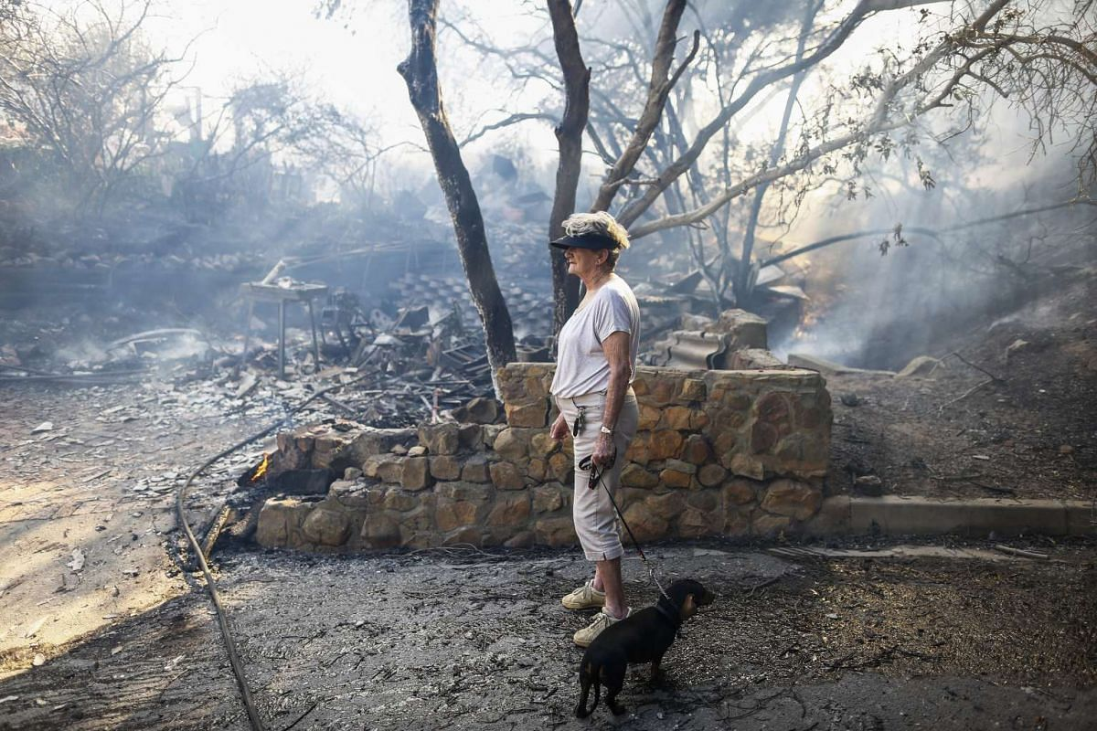 A resident walks with her dog past homes destroyed in a bush fire in Simonstown, Cape Town, South Africa, 19 Nov 2015.