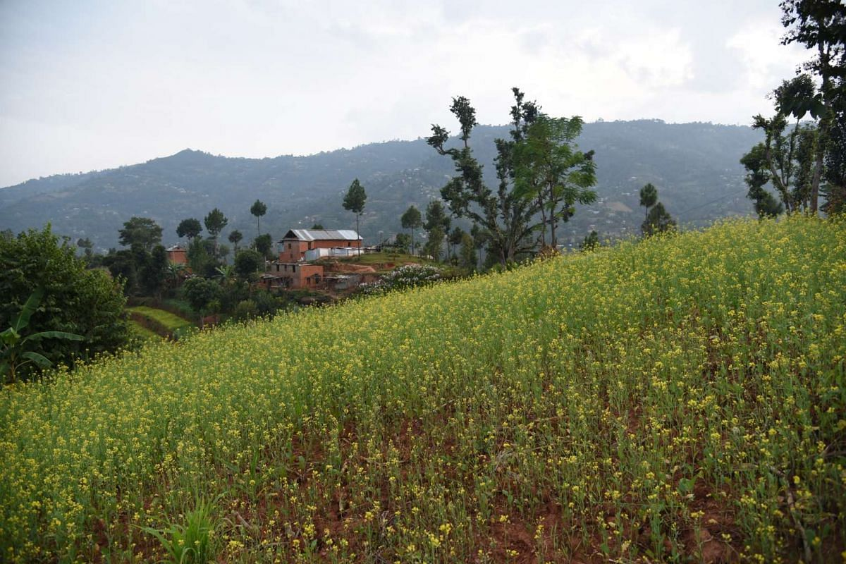 A house on a hill in Bhakunde Besi.