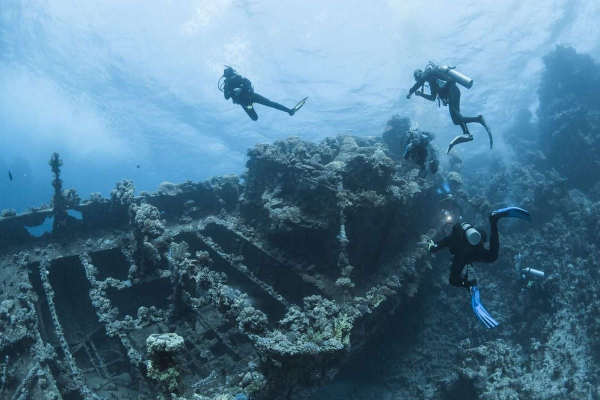 Divers swimming next to a wreck in the Red Sea in Egypt on Dec 1, 2015.