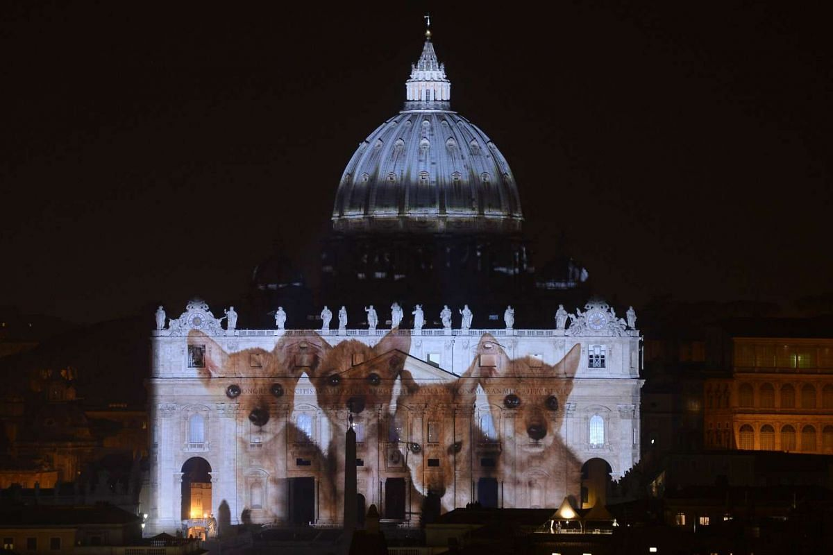 Images of clouds, lions and butterflies - alternating with polluted air and parched farmland - were projected on the famous facade as global leaders try to thrash out a historic climate deal in Paris.