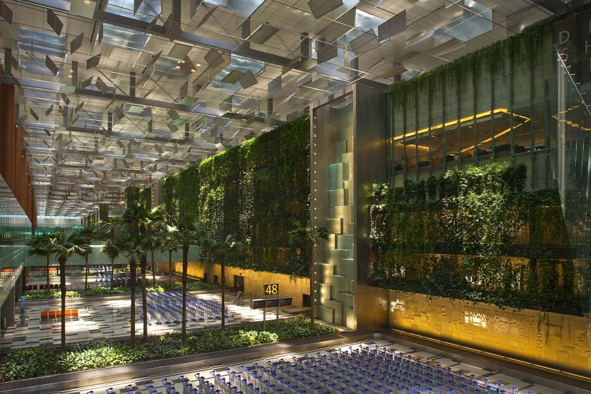 Mr Franklin Po and the vertical greenery at Changi Airport's Terminal 3 (above).