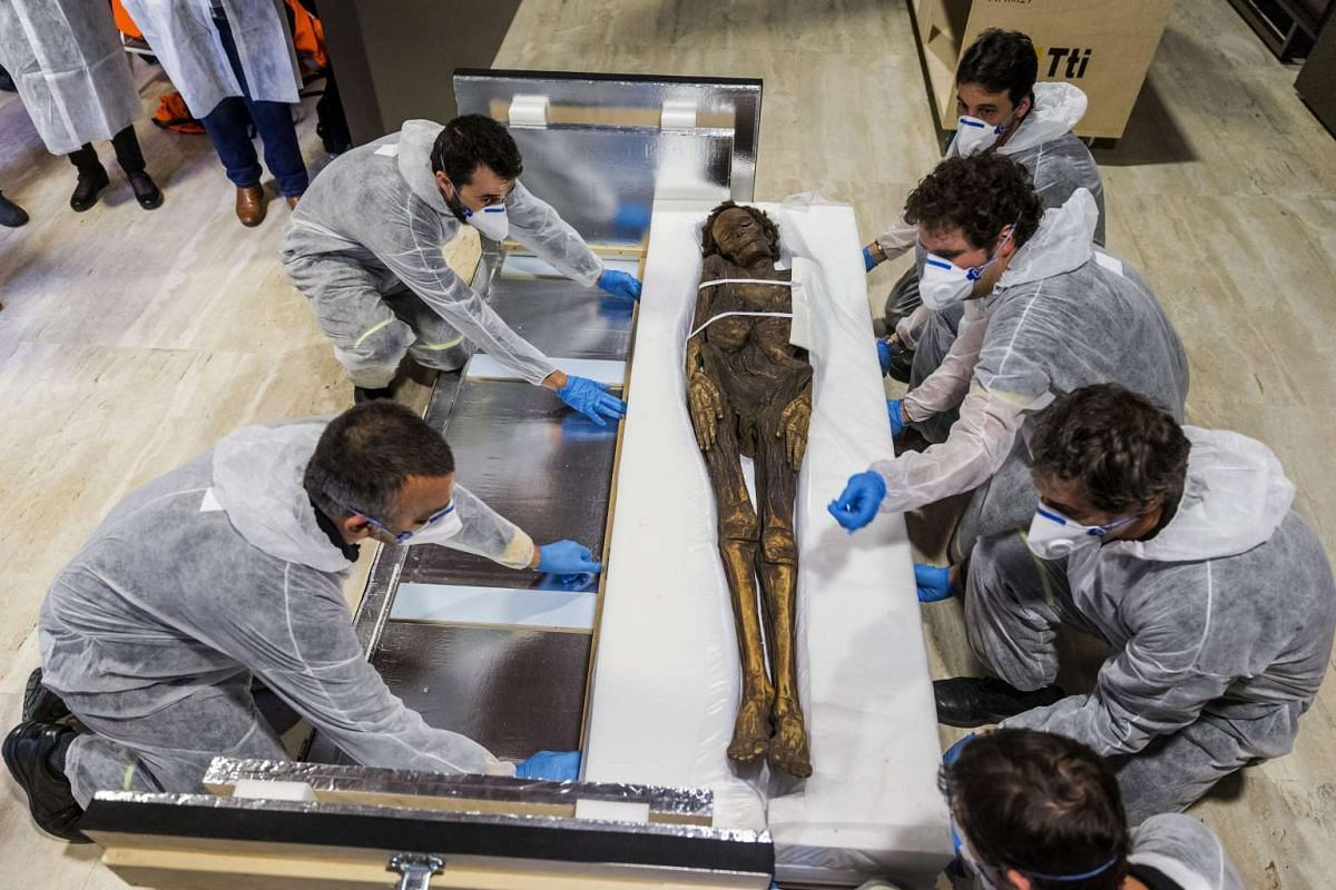Several archaeologists carry the 'Guanche Mummy of Barranco de Herques' upon its arrival at National Museum of Archeology in Madrid, Spain, 14 December 2015. PHOTO: EPA