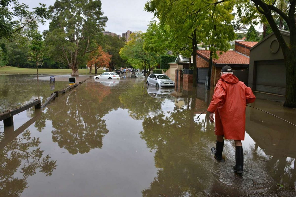 A worker wades past inundated cars on a flooded street after a storm hit the eastern suburbs of Sydney on December 16, 2015. PHOTO: AFP