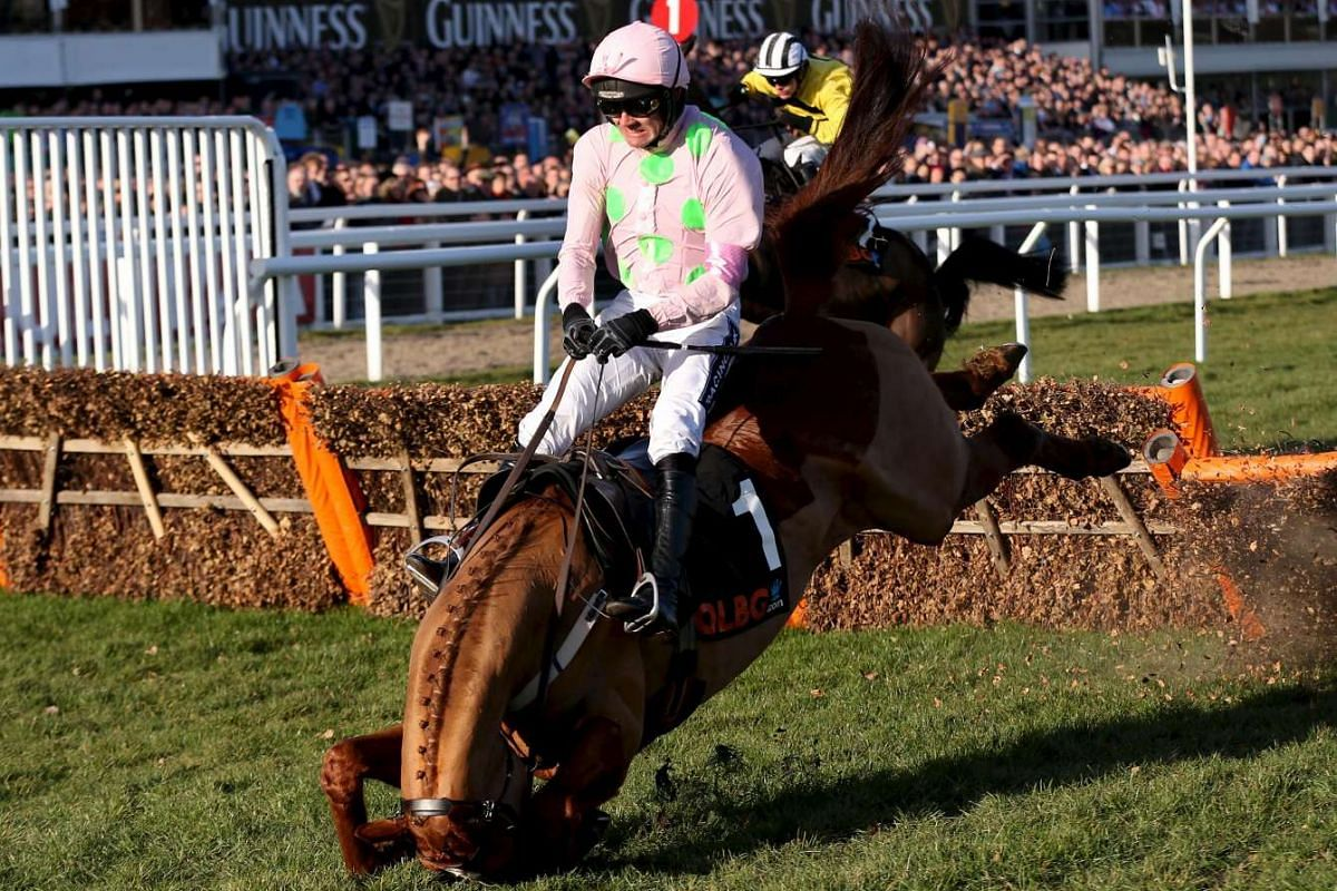Ruby Walsh on Annie Power falling at the last during the 16:00 OLBG Mares' Hurdle at the Cheltenham Festival in Cheltenham, Britain on March 10, 2015.