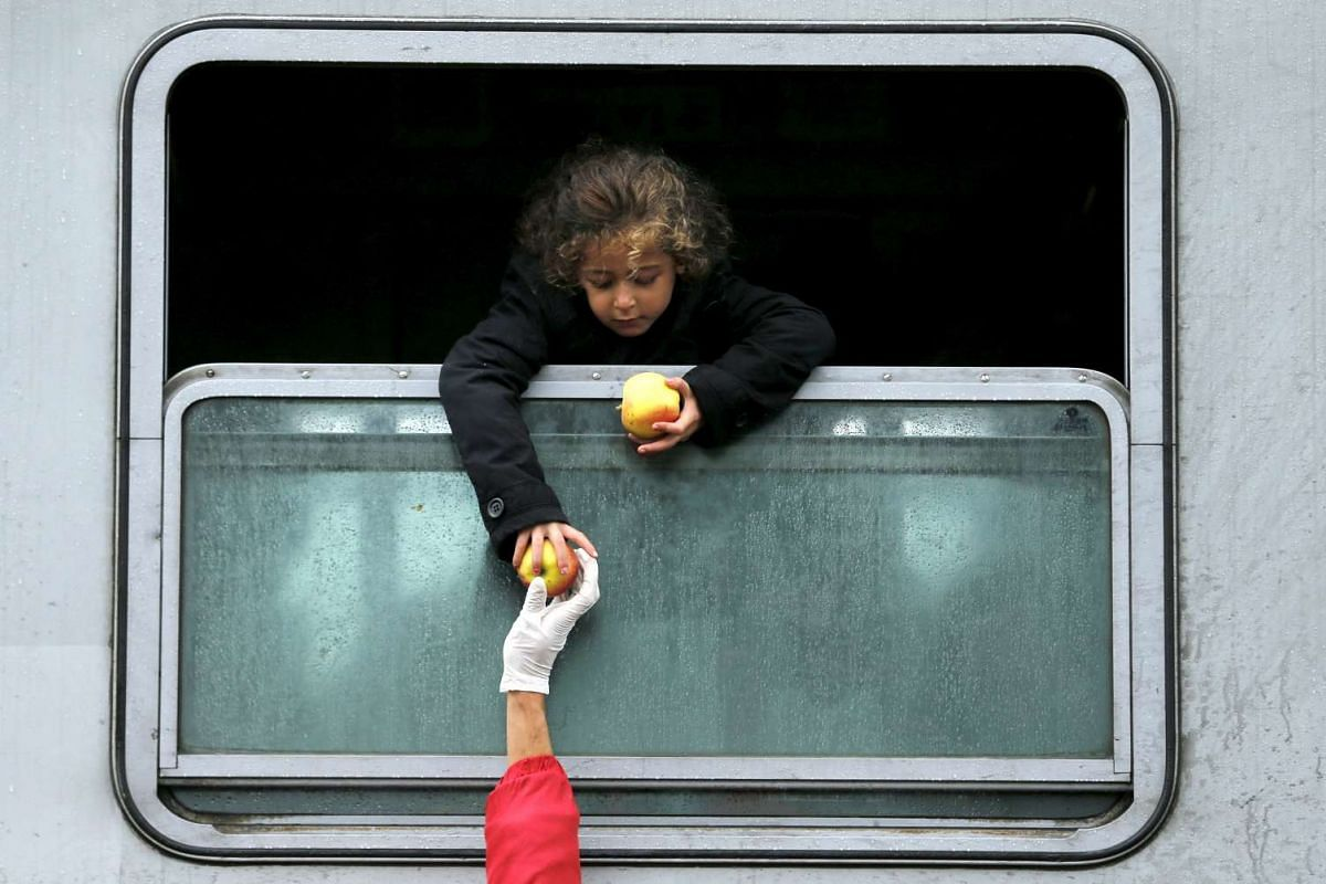 A migrant child leaning out of a train window to collect food at the railway station in Tovarnik, Croatia ion Sept 29, 2015.
