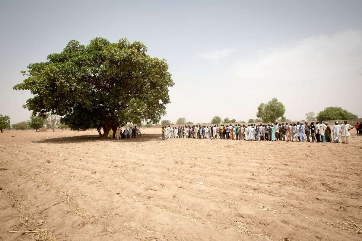 Voters waiting to cast their ballots at a polling station set up under a tree on the outskirt of Kano during the presidential elections on March 28, 2015.