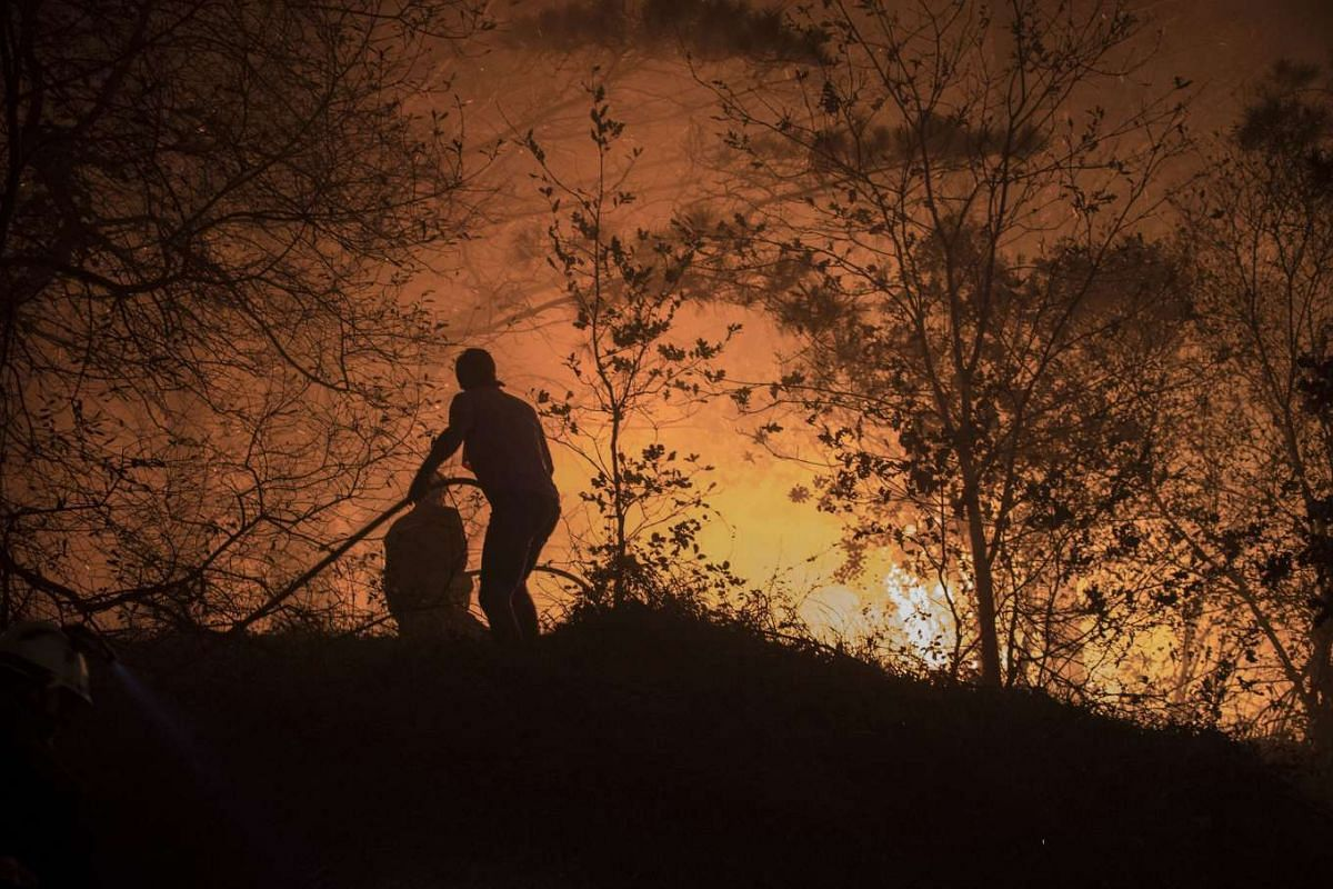 WILDFIRE IN SPAIN: Two neighbours trying to extinguish a fire which began at Berango village in Bizkaia, Spain, on Dec 27, 2015.