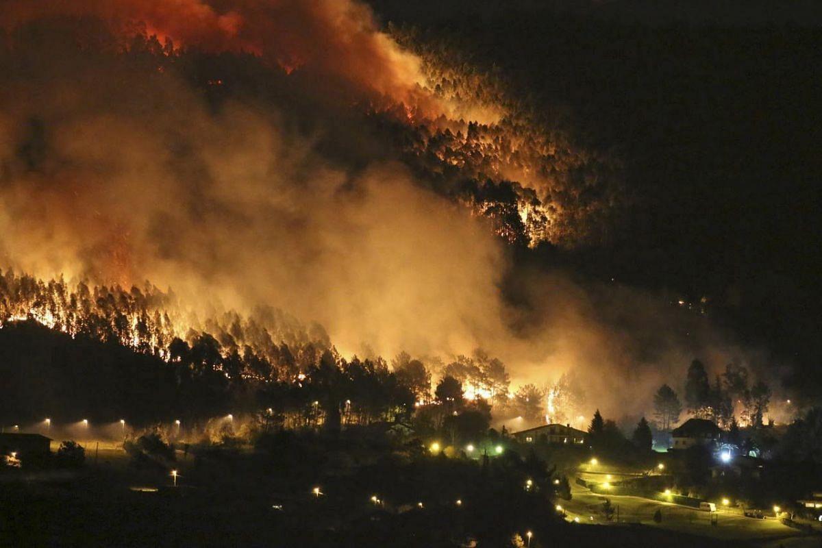 Flames burning trees near houses during a fire which began at Berango village in Bizkaia near Bilbao, Spain on Dec 27, 2015.