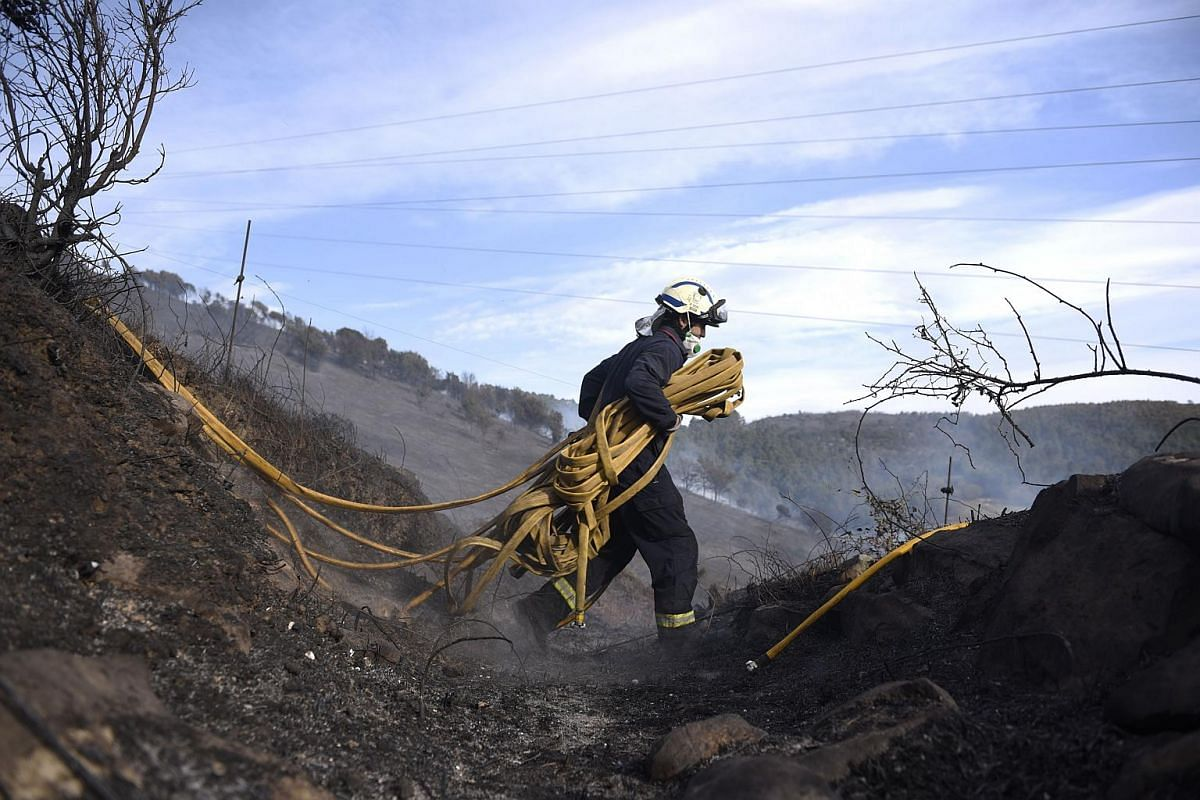 WILDFIRE IN SPAIN: A firefighter carries a hose as he works in an area affected by wildfires near the northern Spanish Basque town of Berango on Dec 28, 2015.