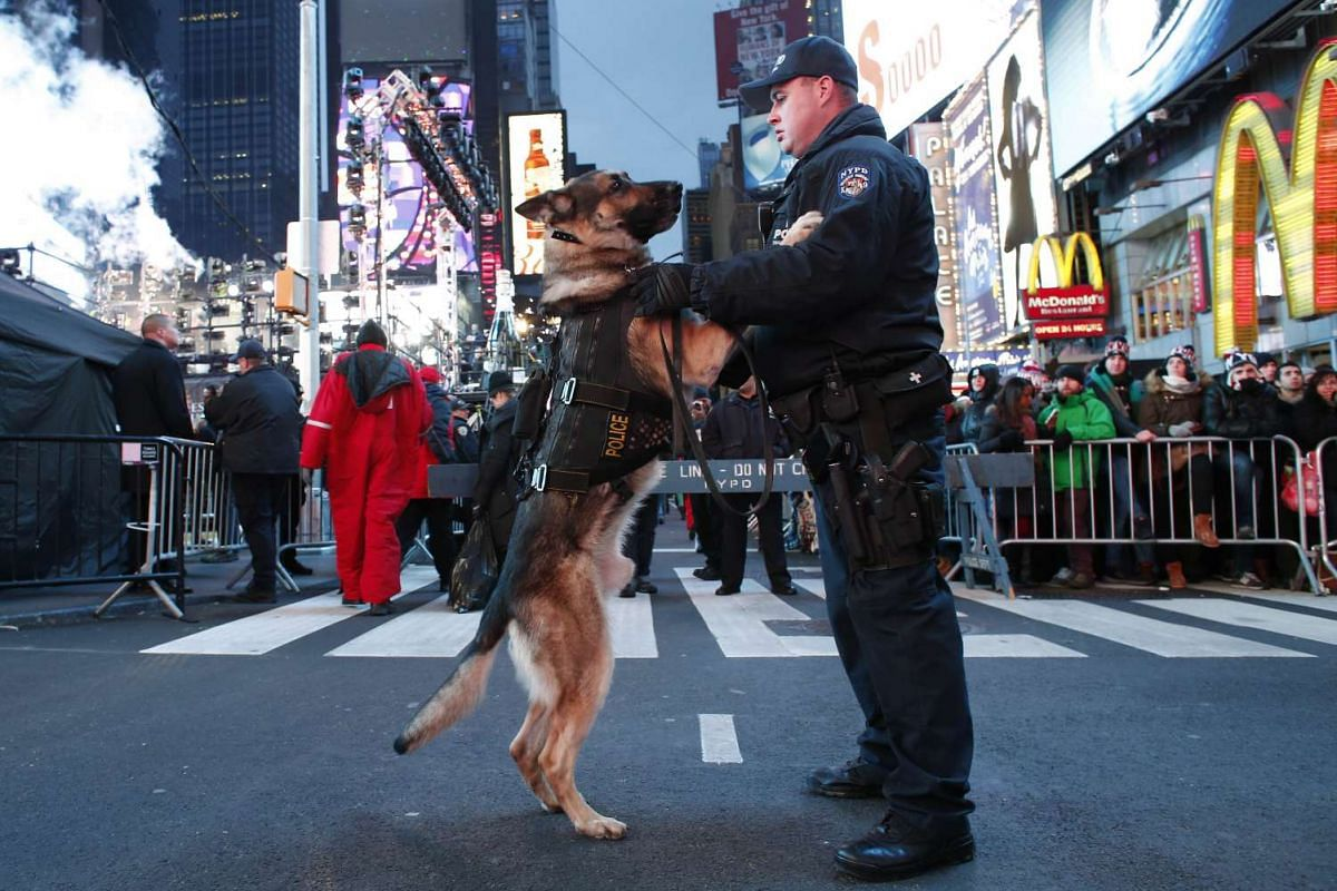A New York City police officer holds his dog as they patrol in Times Square ahead of the New Year celebrations in New York on Dec 31, 2015.