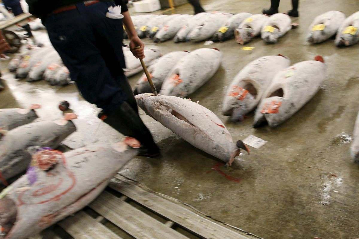 A wholesaler carrying a frozen tuna after the New Year's auction at the Tsukiji fish market in Tokyo.