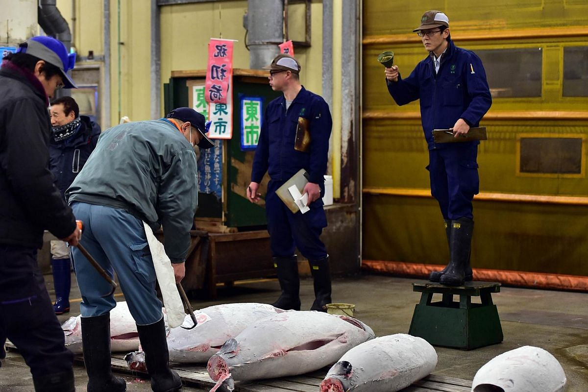 Bluefin tuna are auctioned during the first trading day of the new year at Tokyo's Tsukiji fish market.