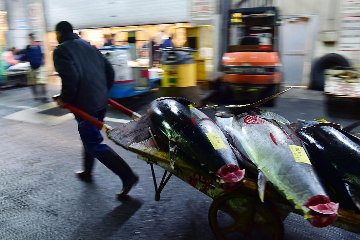 Bluefin tuna are taken away by a fishmonger on the first trading day of the new year at Tokyo's Tsukiji fish market.