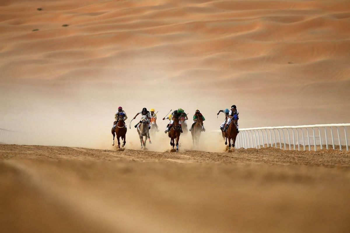 Jockeys competing in a race for purebred Arab horses during the Liwa 2016 Moreeb Dune Festival on Jan 5, 2016, in the Liwa desert, Abu Dhabi.