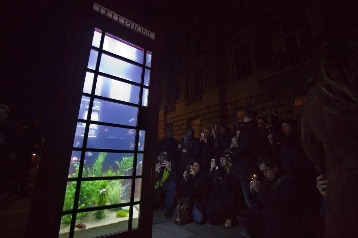 Spectators taking pictures of the Aquarium by artists Benedetto Bufalino and Benoit Deseille.