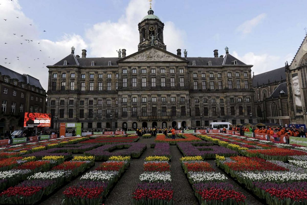 Rows of tulips are arranged in front of the Royal Palace at the Dam Square in Amsterdam to celebrate National Tulip Day, on Jan 16, 2016.
