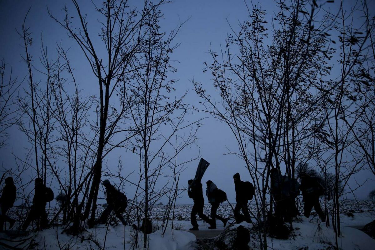 Migrants walk through a frozen field after crossing the border from Macedonia, near the village of Miratovac, Serbia, Jan 18, 2016. PHOTO: REUTERS